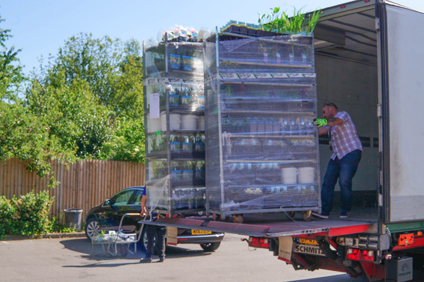 Trolleys of pond plants delivered weekly through summer
