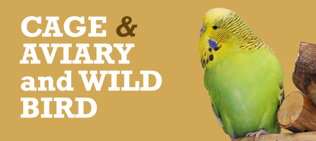 Cage, Aviary and Wild Bird